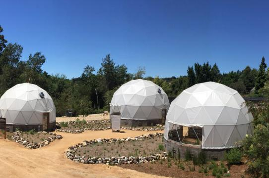 Three geodesic domes