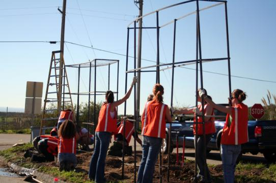 Students in a Public Art class work on a site-specific installation.